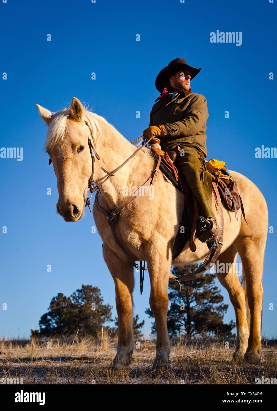 Vaquero en su caballo en un rancho en el noroeste de Wyoming Foto de stock