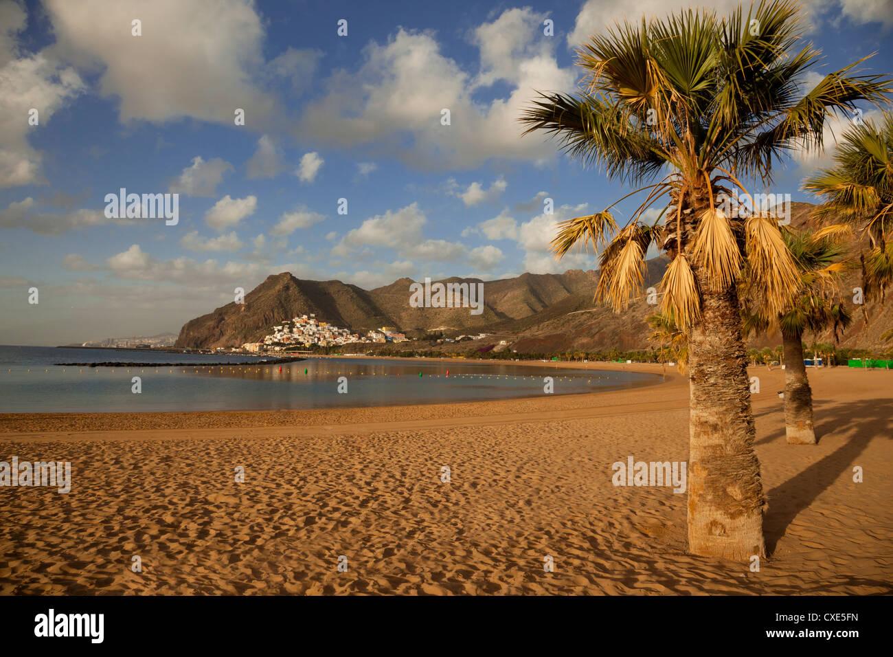 Playa de las Teresitas, temprano en la mañana la luz, Tenerife, Islas Canarias, España, Europa. Imagen De Stock