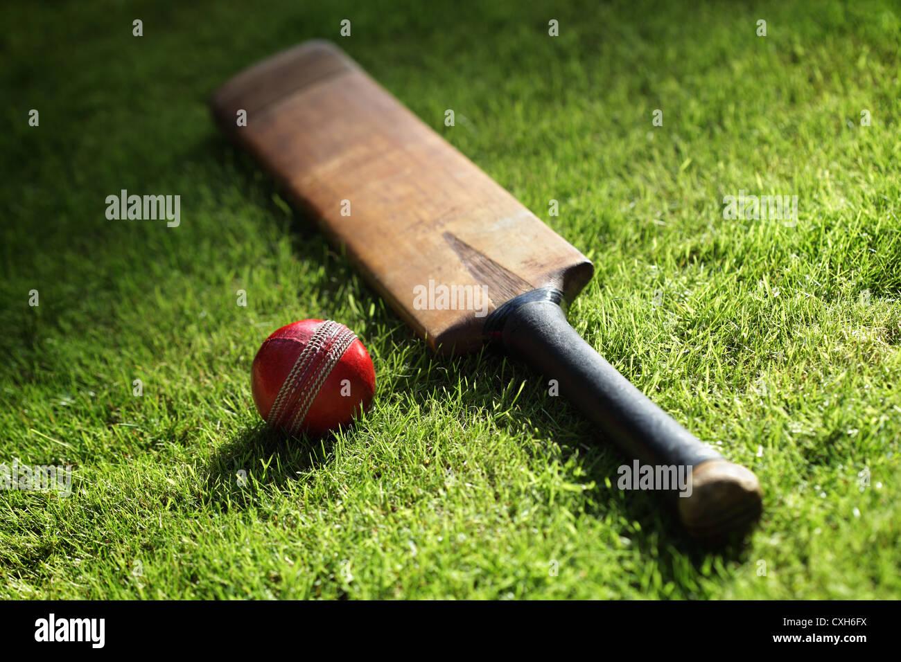 Bate de críquet y bola Imagen De Stock
