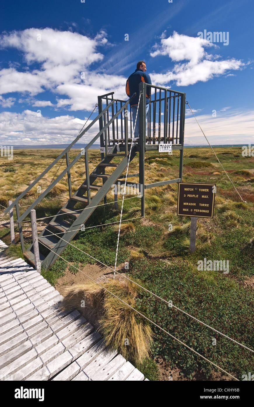 Elk198-4163v Chile, Patagonia, Seno Otway Reserva Pingüino, torre mirador Imagen De Stock