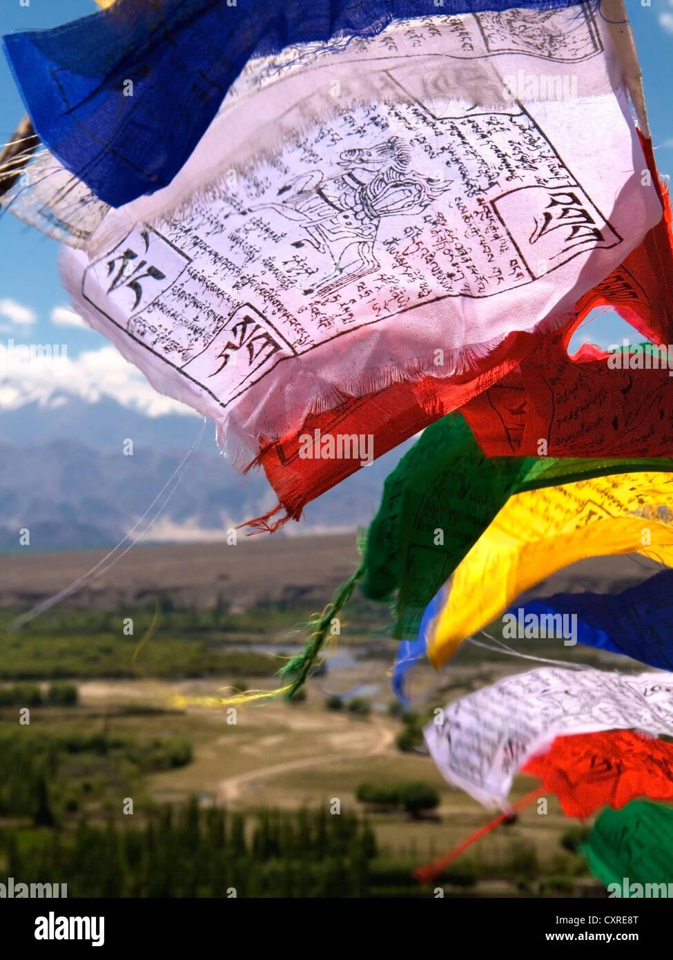 La oración budista banderas ondeando al viento, Ladakh, en el norte de la India, India, Asia Imagen De Stock