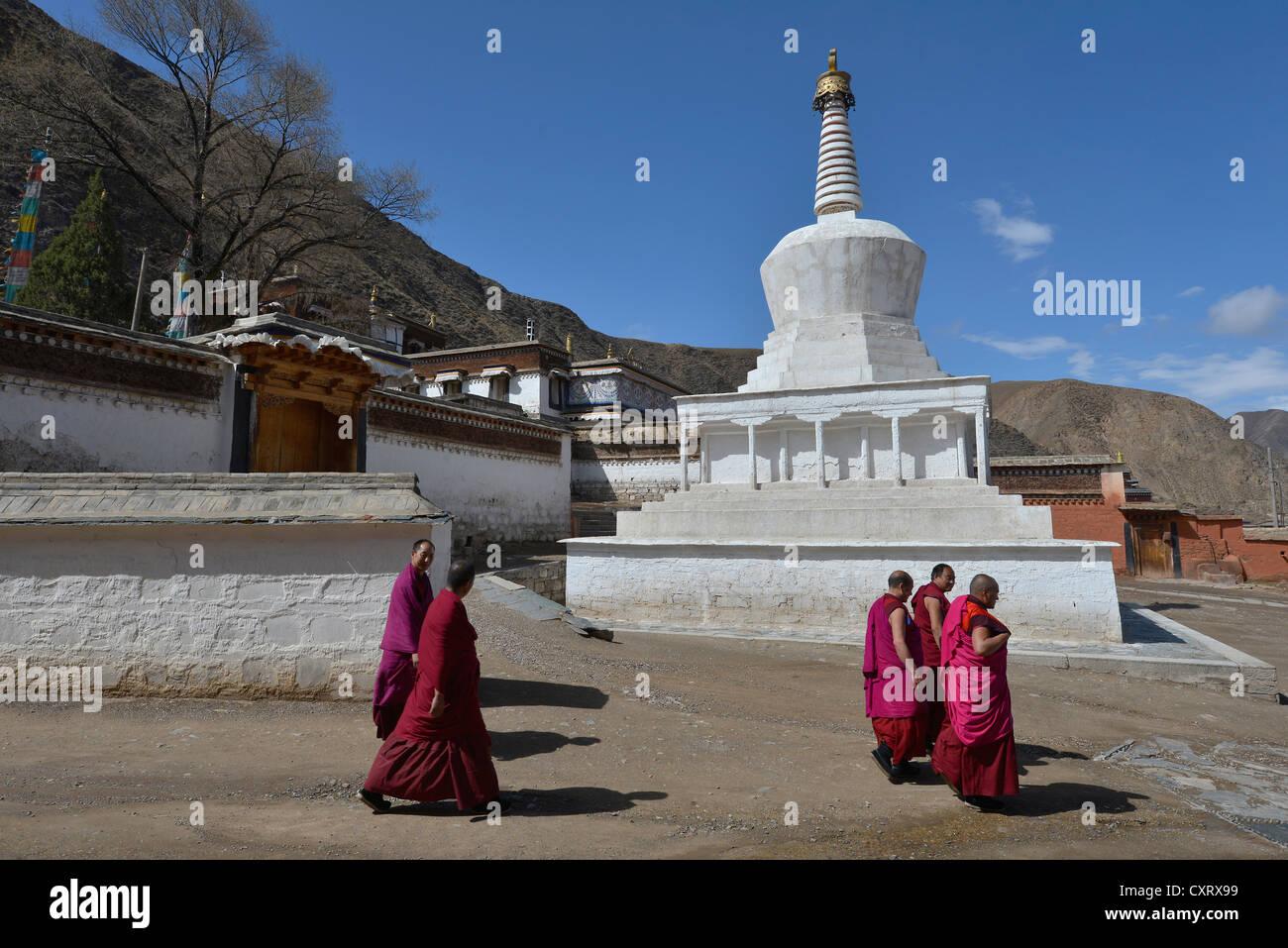 El budismo tibetano, los monjes en frente de una estupa blanca y los edificios del monasterio, construido en el estilo arquitectónico tradicional Foto de stock