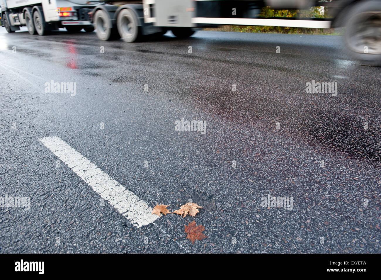 La conducción de camiones en traicioneras y carretera resbaladiza debido a la lluvia o la escarcha Imagen De Stock