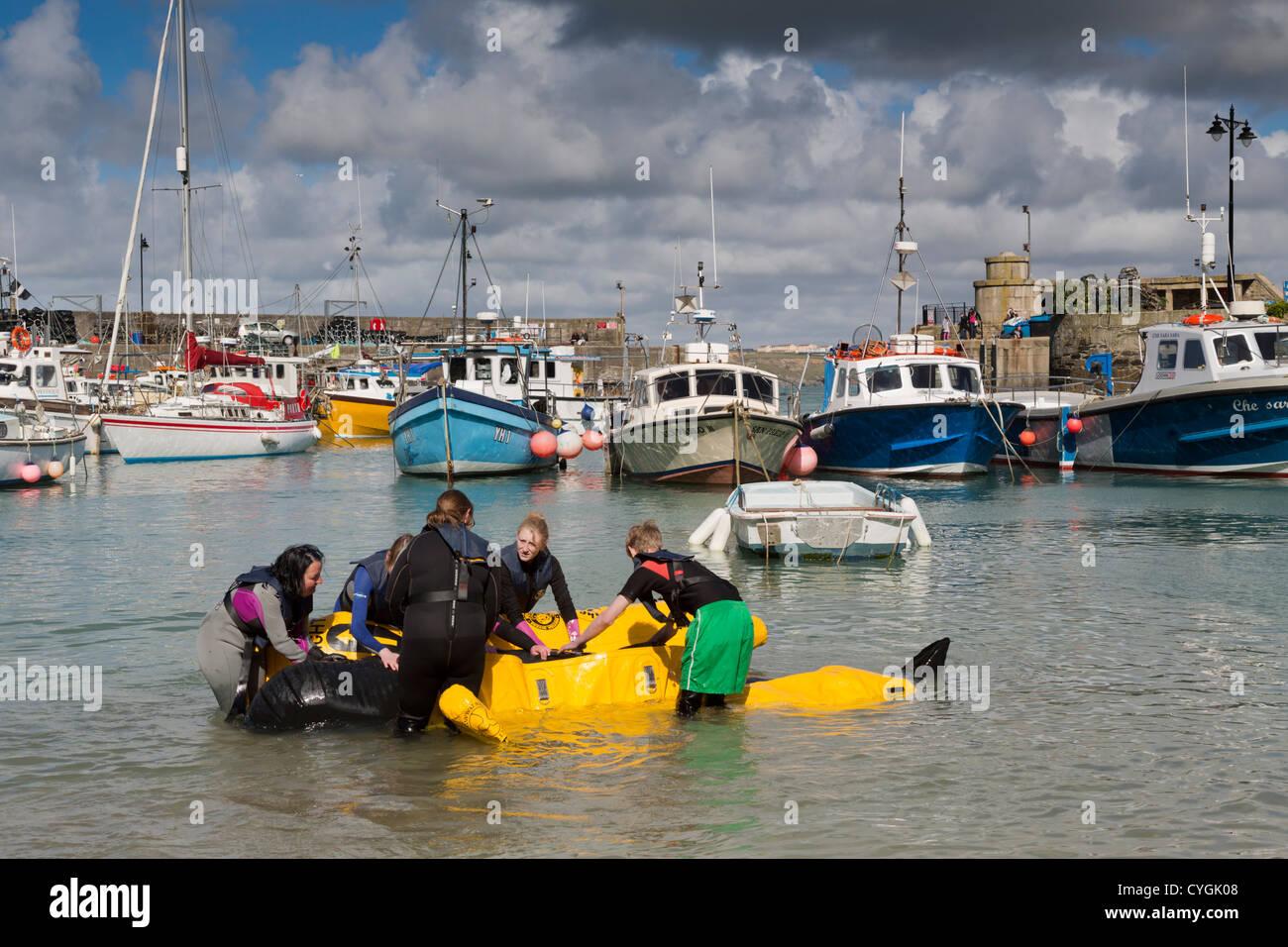 Rescate de cetáceos varados; capacitación; Newquay, Cornwall; Foto de stock