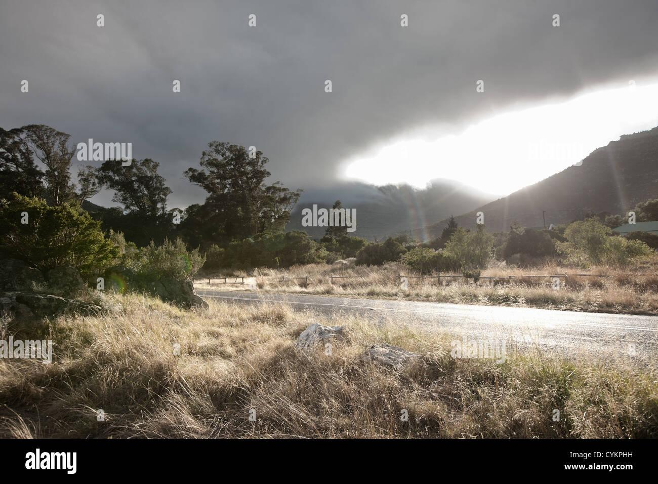 Césped que crece a lo largo de los caminos rurales Imagen De Stock