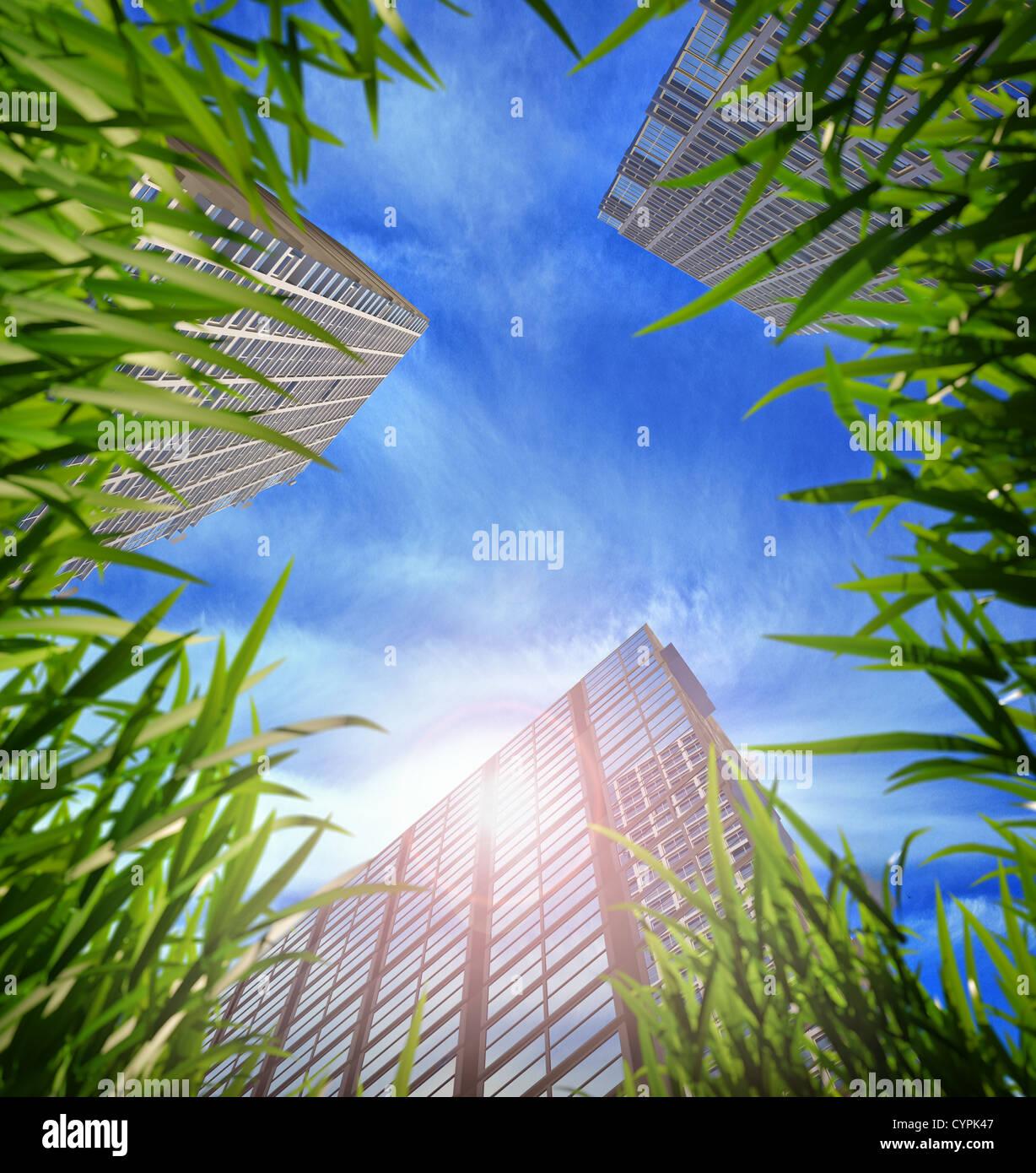 La pasto verde y los rascacielos, tendiendo al cielo en el fondo. DOF superficial Imagen De Stock