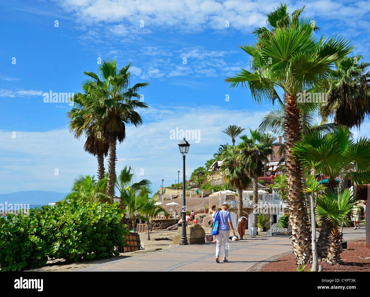 El complejo de Bahía Del Duque, en la Costa de Adeje, en Tenerife, Islas Canarias Imagen De Stock