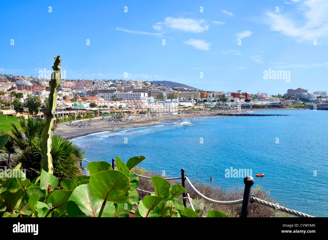 Mirando hacia de Torviscas Fañabé en Costa Adeje, Tenerife, Islas Canarias Imagen De Stock