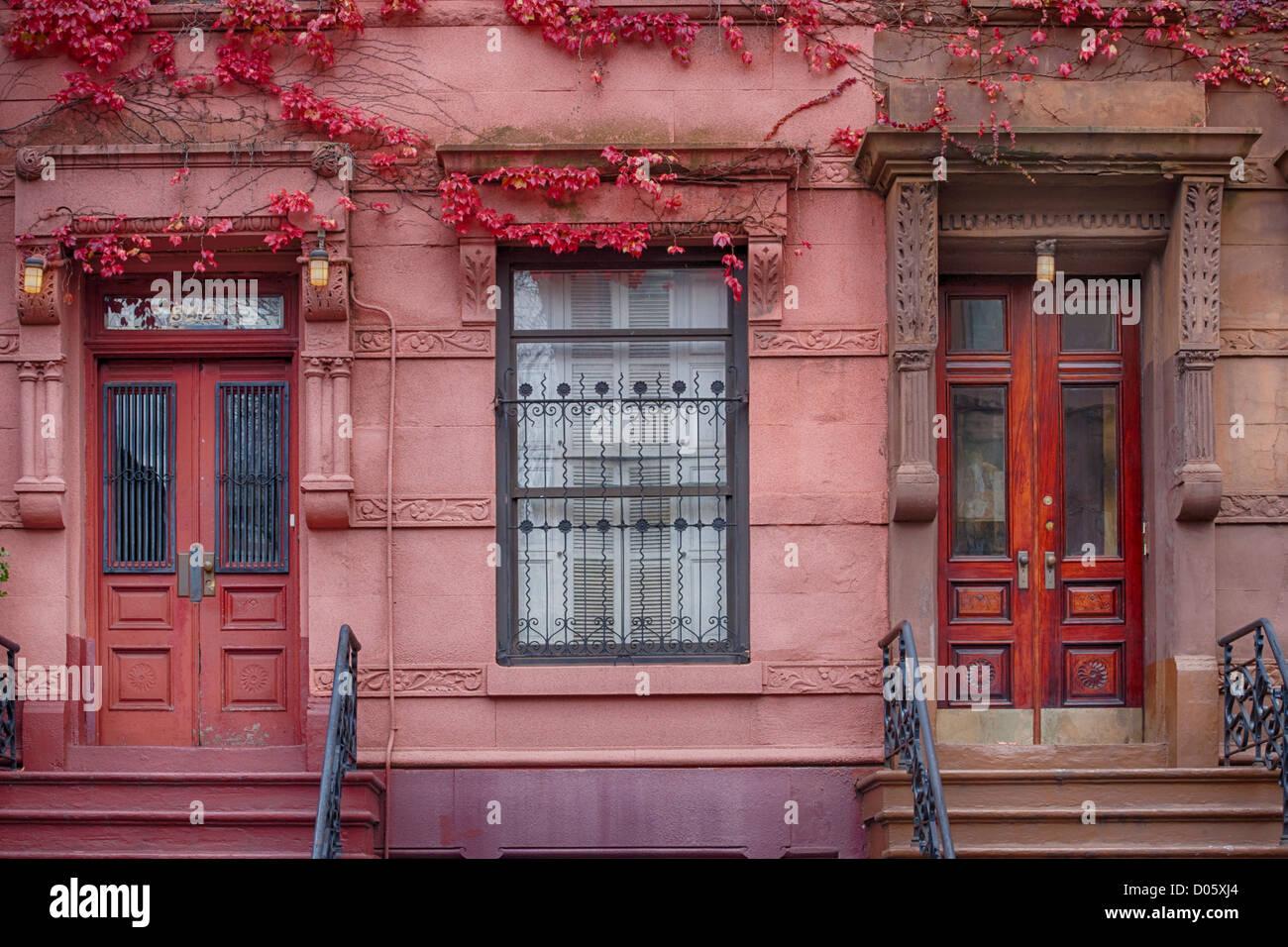 Las puertas de la casa de fila de color rosa con ivy, Harlem, Nueva York, EE.UU. Imagen De Stock