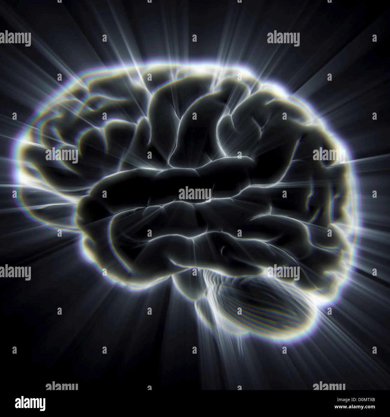 Diagrama del cerebro humano emana rayos de luz. Imagen De Stock