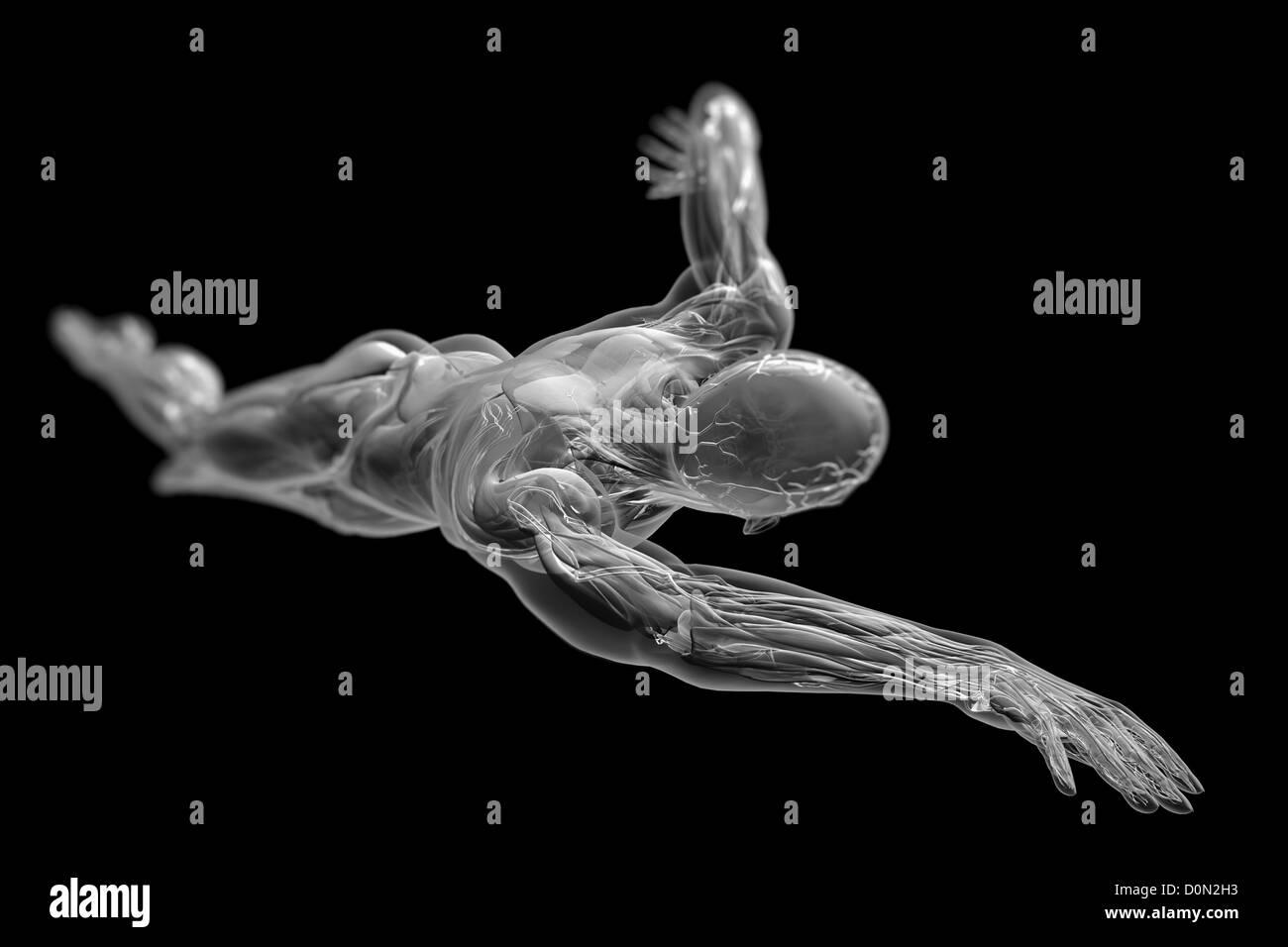Una figura masculina nadando en mitad de la carrera con la piel ...
