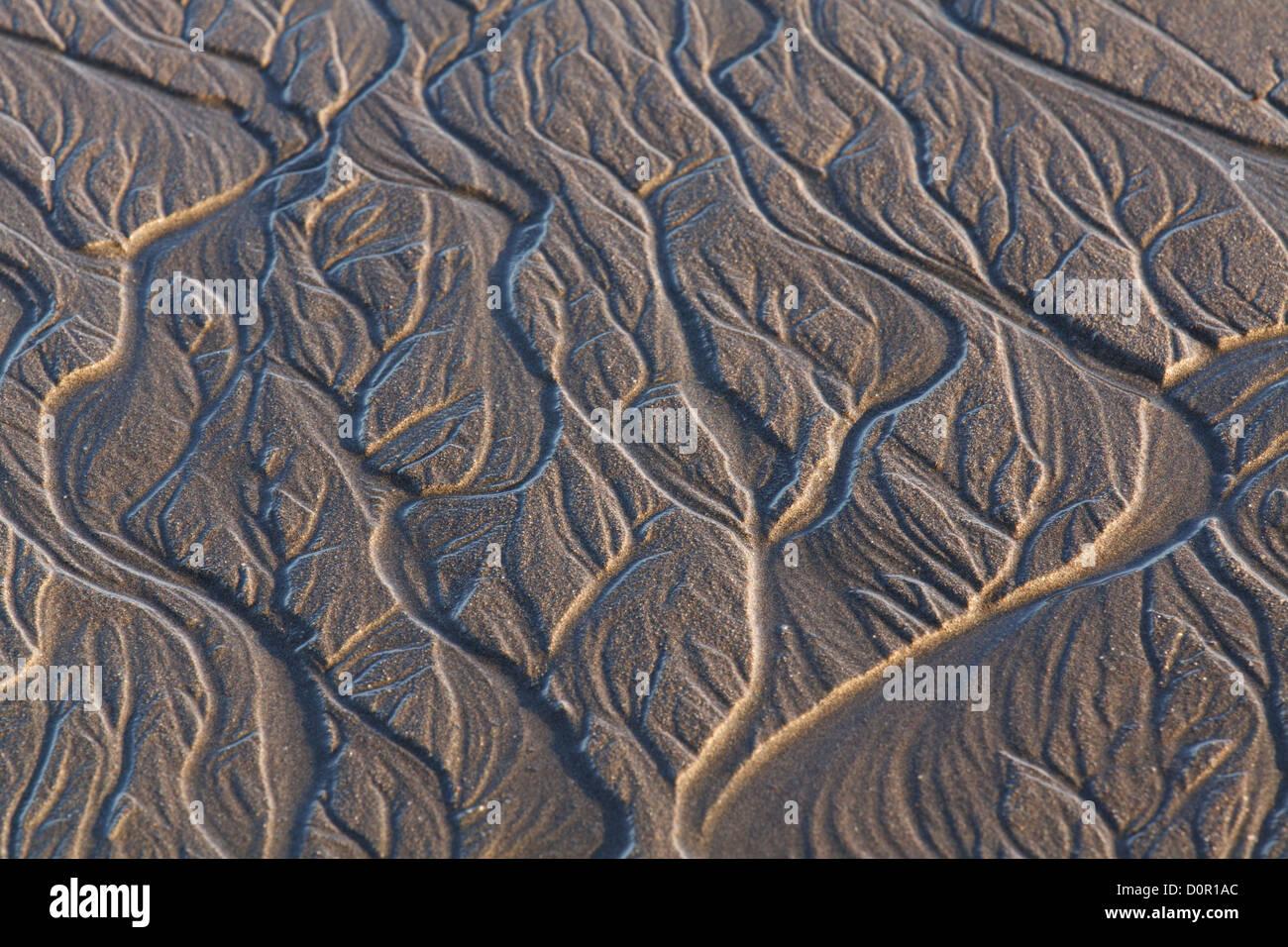 Los patrones de la arena, el Parque Nacional Lake Clark, Alaska. Imagen De Stock