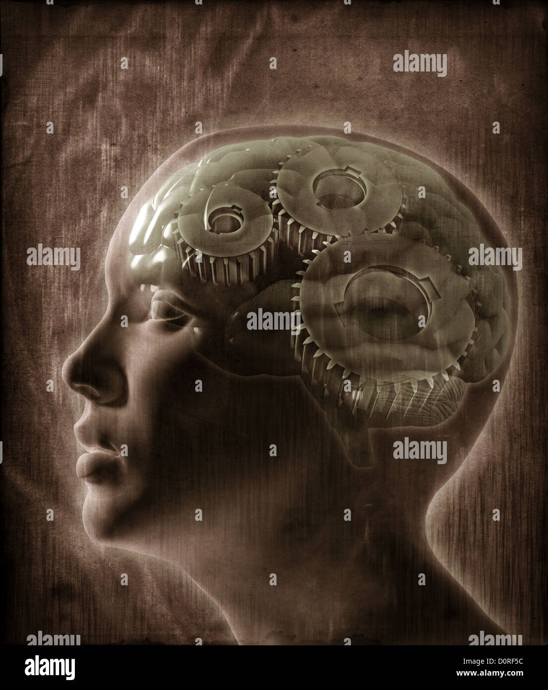 Concepto de inteligencia humana Imagen De Stock
