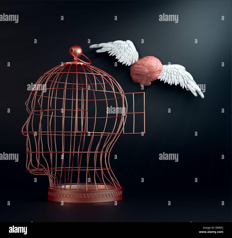 Cerebro con alas Imagen De Stock