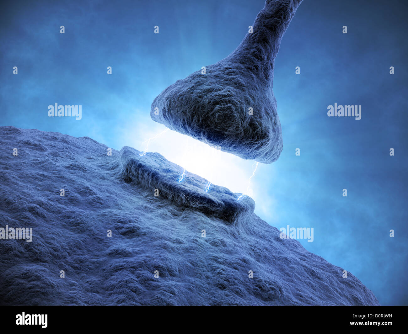 Synapse - sistema neural humano Imagen De Stock