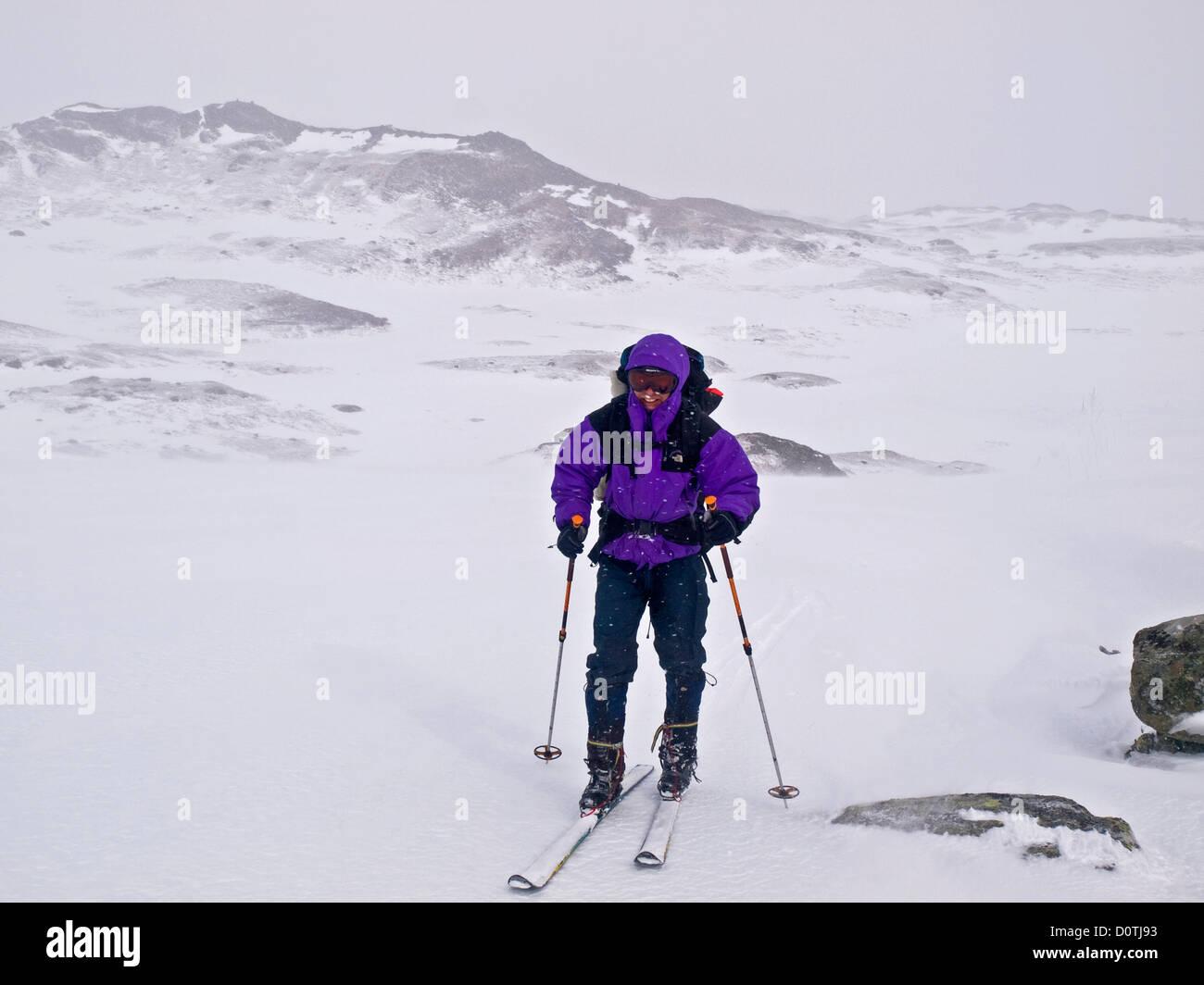 Hombre de esquí de travesía en las malas condiciones climáticas de la región de Hardanger, Noruega Imagen De Stock