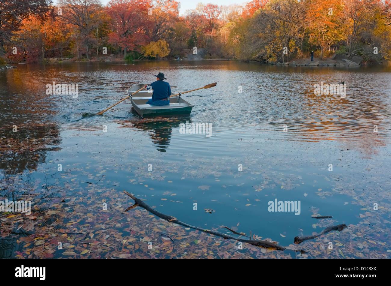 New York, NY - 19 de noviembre de 2010 Hombre remando un bote en el lago en Central Park. Imagen De Stock