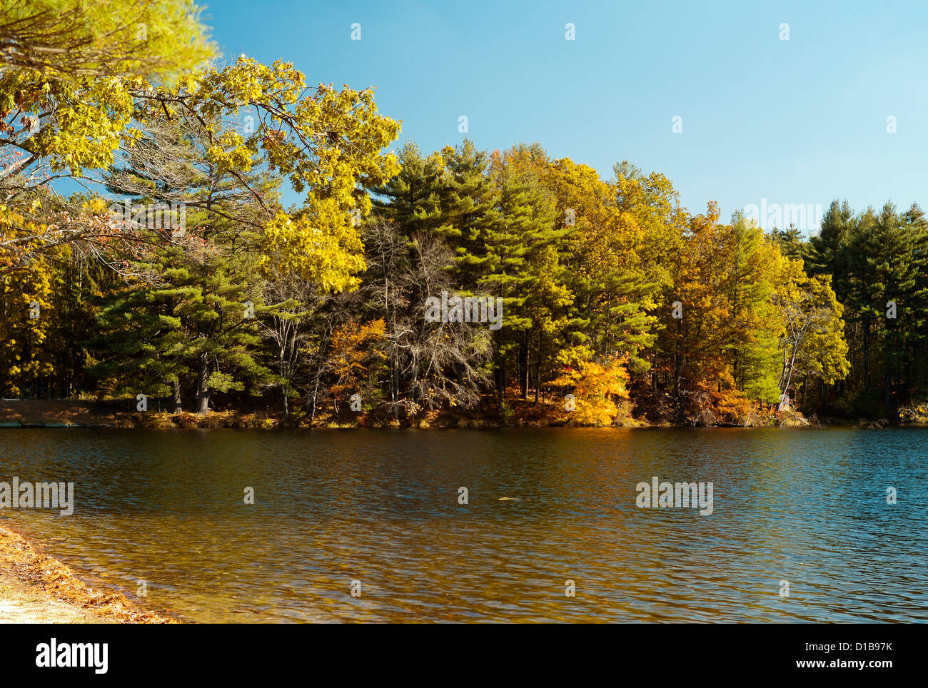 Colores de otoño por el lago en Nueva Inglaterra Foto de stock