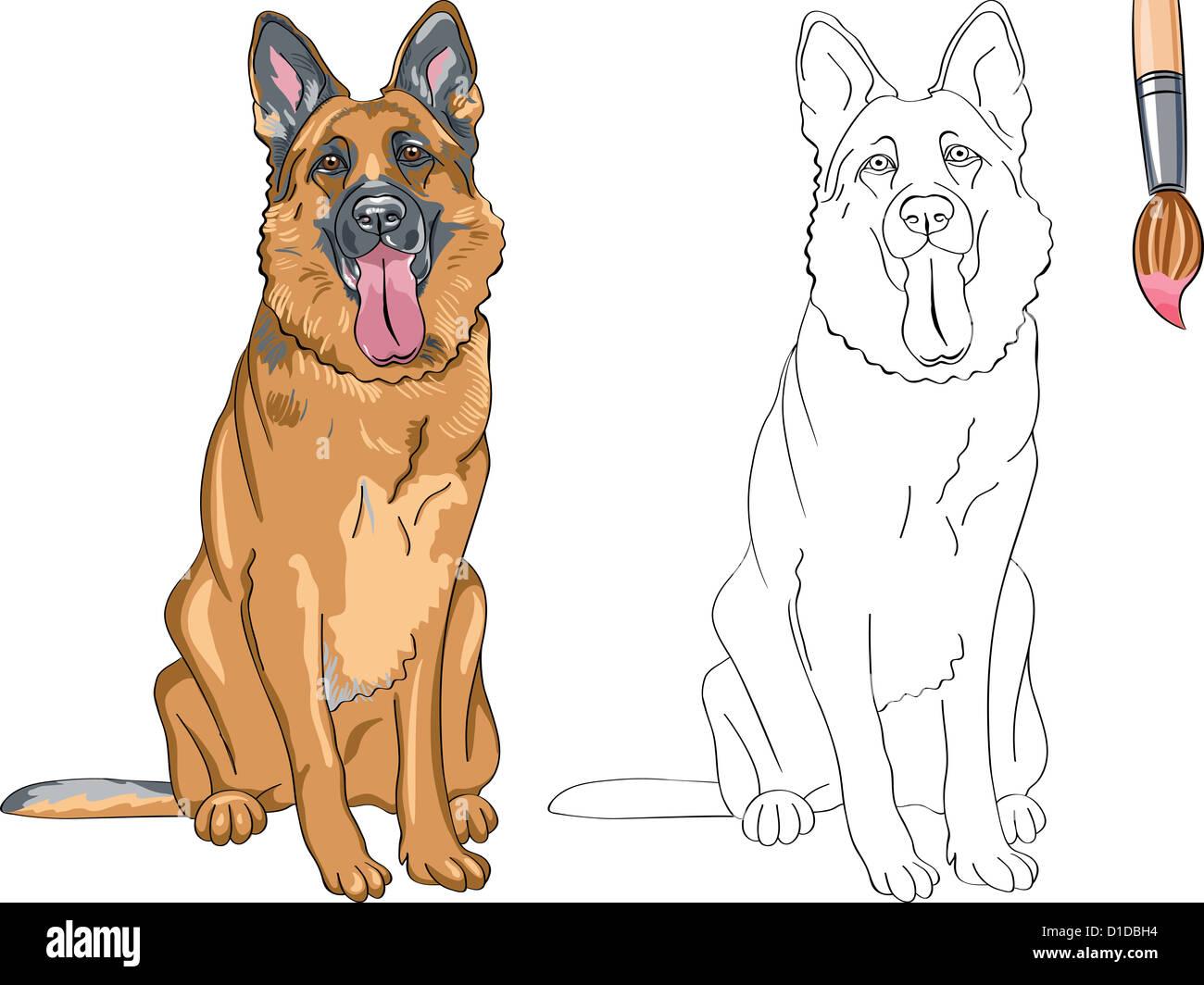 Libro para colorear de vectores de funny sonriente perro de raza ...