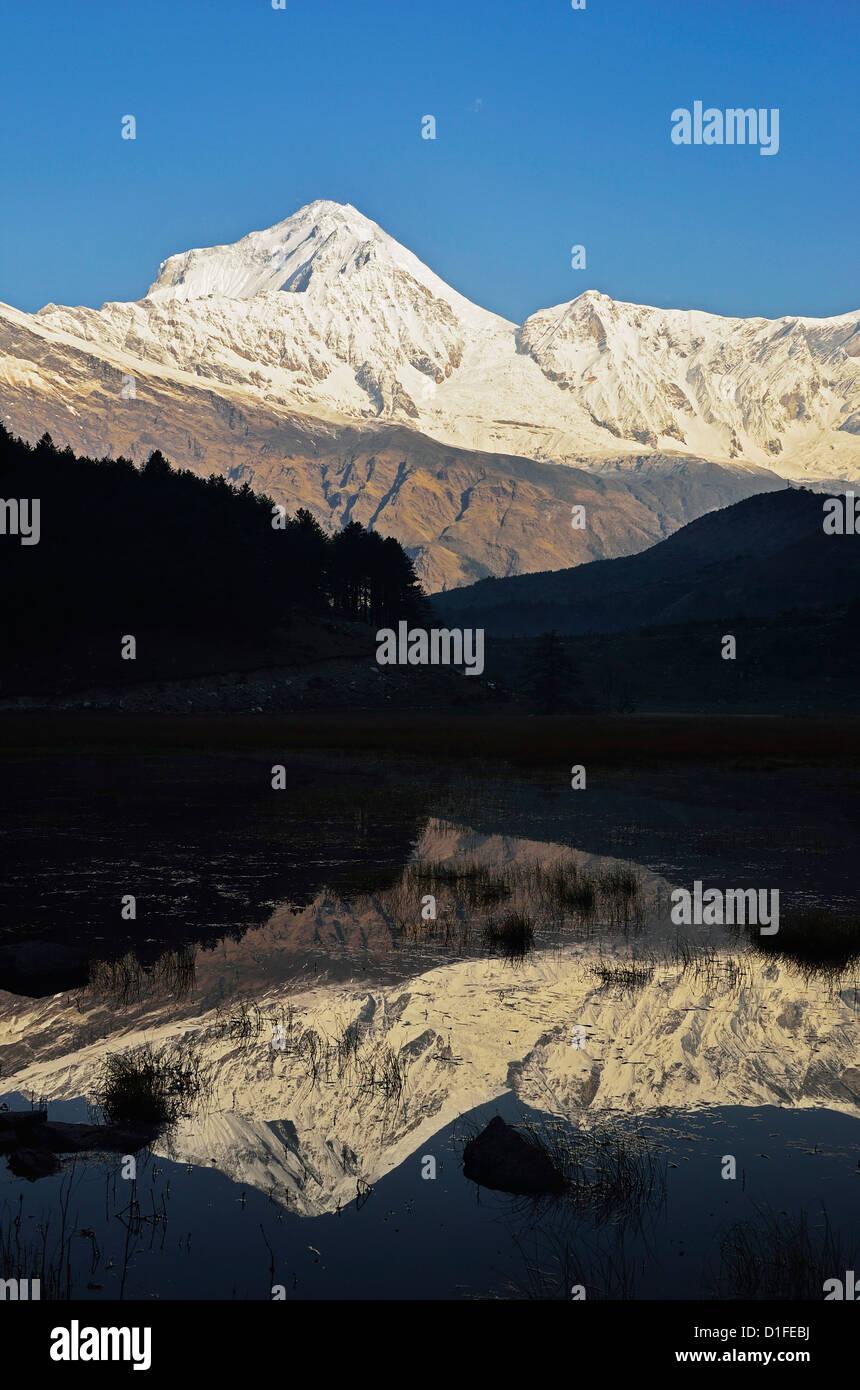Dhaulagiri Himal visto desde Titi, Área de Conservación de Annapurna, Dhawalagiri (Dhaulagiri), Región Imagen De Stock
