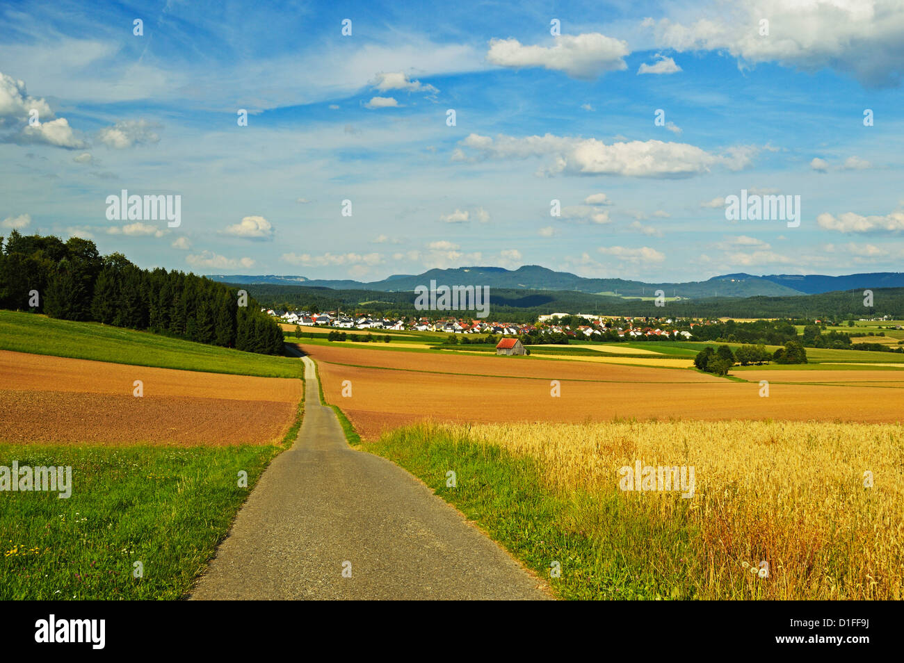 Escena rural, la aldea de Lauffen, cerca de Rottweil, Selva Negra, Schwarzwald-Baar, Baden-Wurttemberg, Alemania, Foto de stock