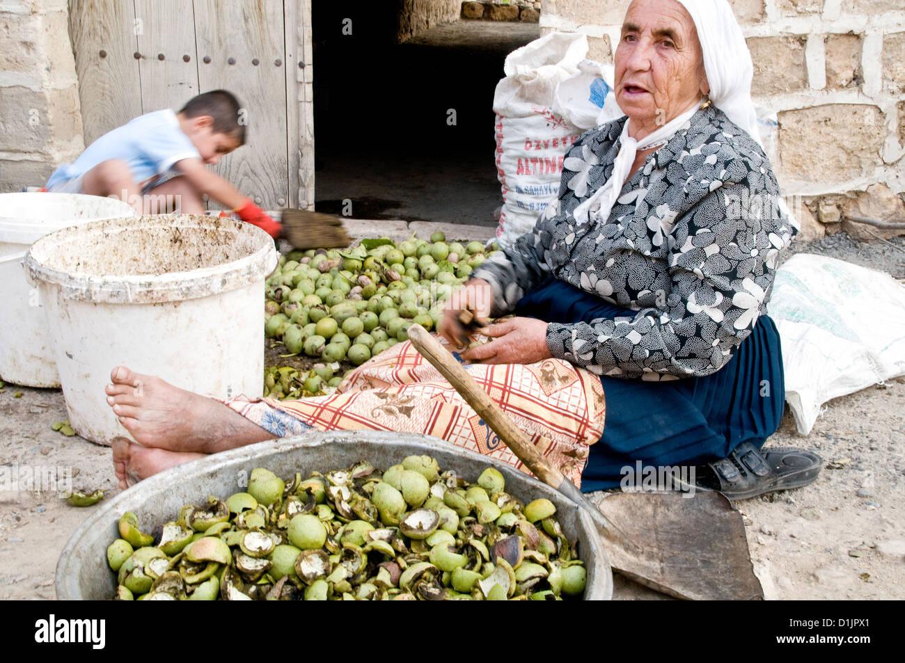 Una anciana mujer cristiana Siríaca de cáscaras de nueces en la ciudad turca de Dereici en el Tur Abdin Imagen De Stock