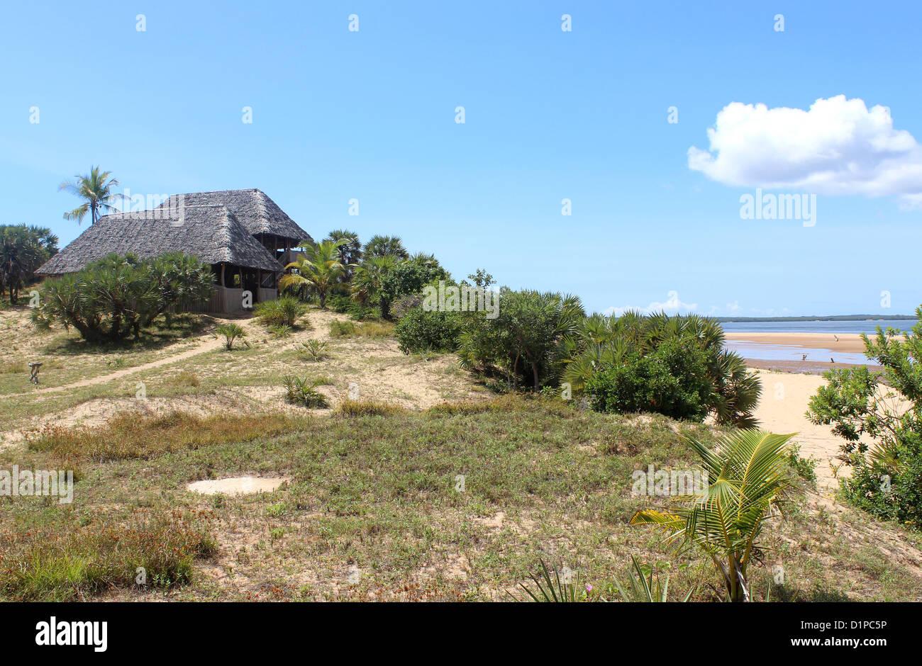 Kipungani Explorer palm beach resort, banda de paja Guest accommodation, Isla de Lamu, Kenya, Africa Oriental Imagen De Stock