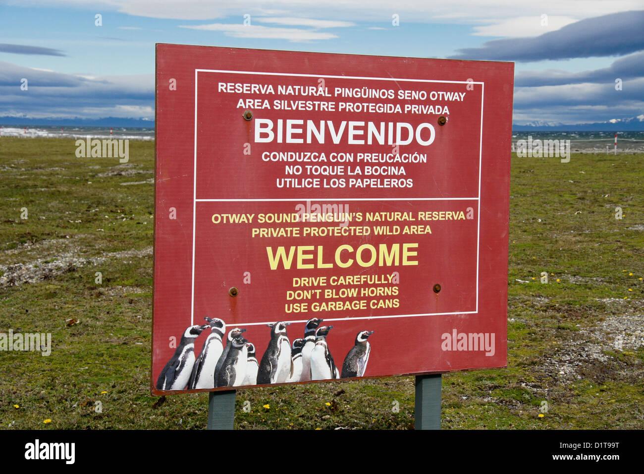 Firmar al Seno Otway Reserva Pingüino, Patagonia, Chile Imagen De Stock