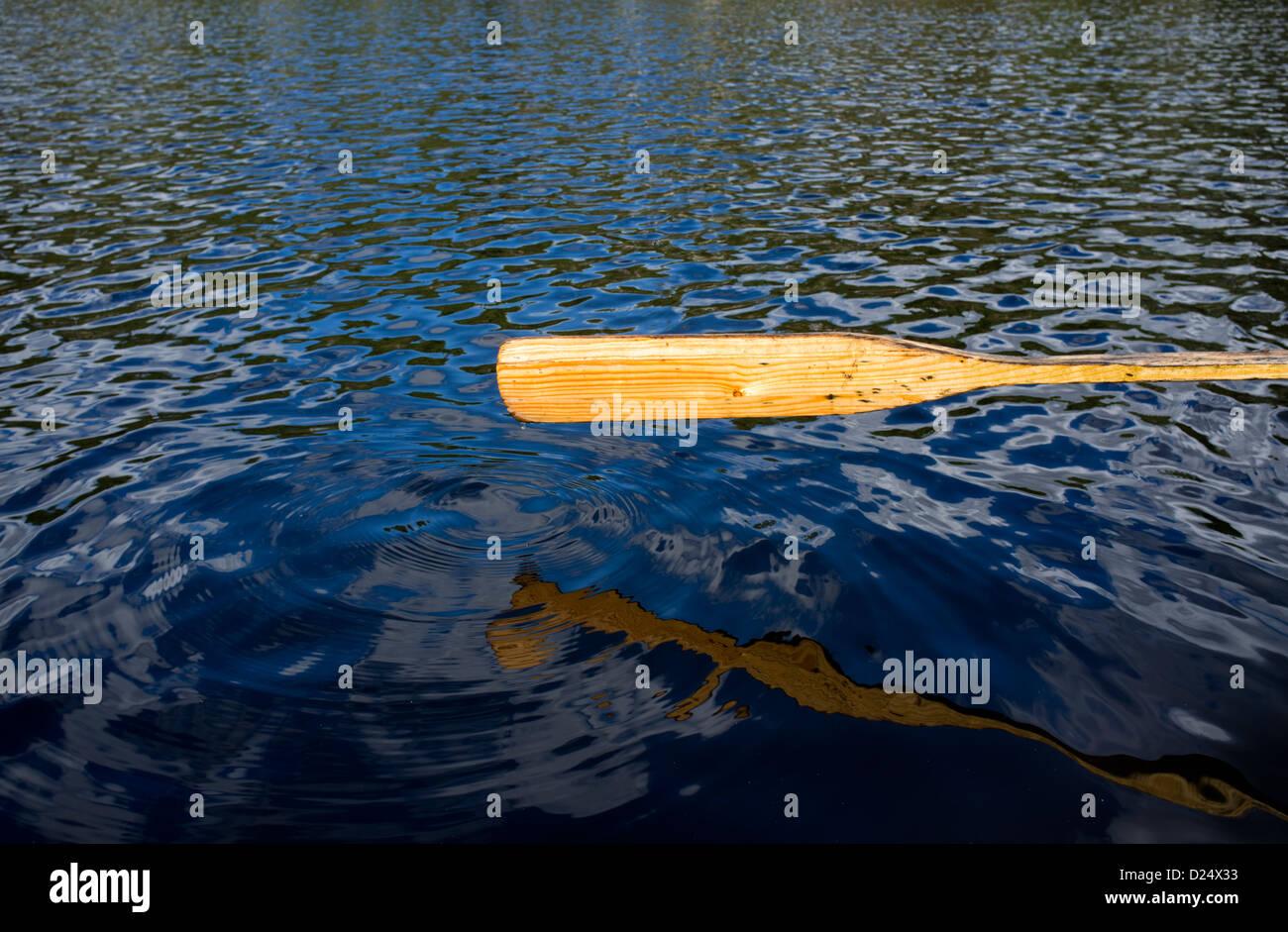 Hoja de madera de oar, Finlandia Foto de stock