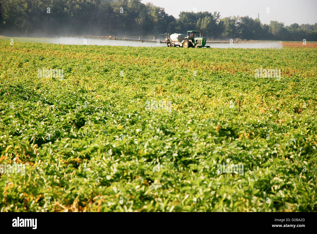 Spray químico en cultivos Imagen De Stock