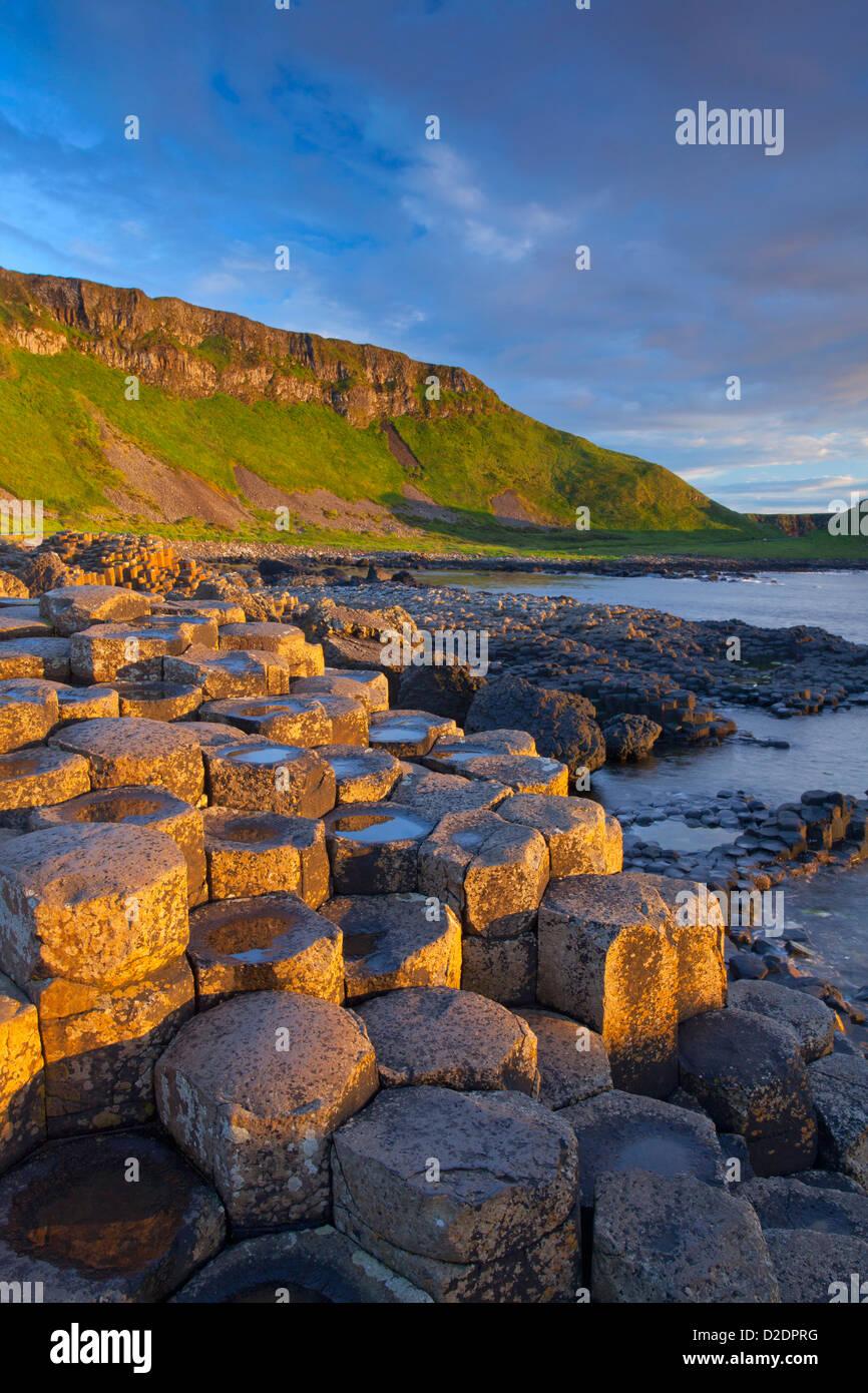 Luz del atardecer sobre la Calzada del Gigante, Condado de Antrim, Irlanda del Norte. Imagen De Stock