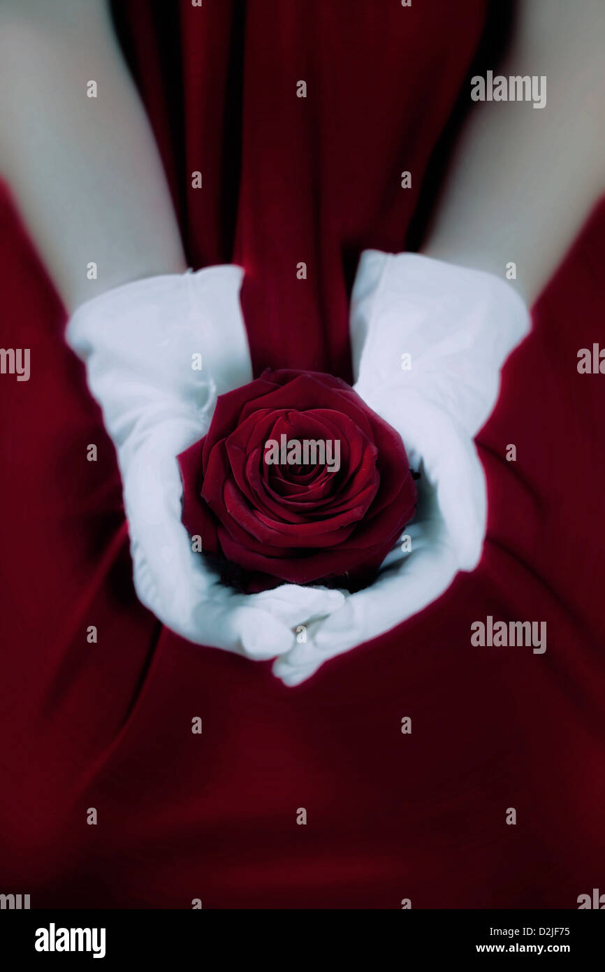 Una mujer en un vestido rojo con guantes blancos sosteniendo una rosa roja en su regazo Imagen De Stock