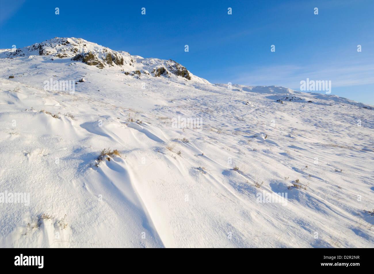 Buchan Hill, en invierno, la nieve, Galloway Hills, Dumfries y Galloway, Escocia, Reino Unido, Europa Foto de stock