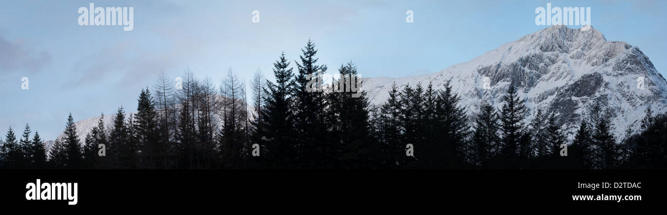 Panorámica del valle Romsdalen con el bosque y la montaña Blånebba, 1320 m, Møre og Romsdal, Noruega. Foto de stock