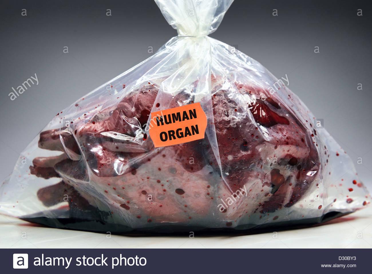 Corazón humano con etiqueta de precio, la donación de órganos Foto ...