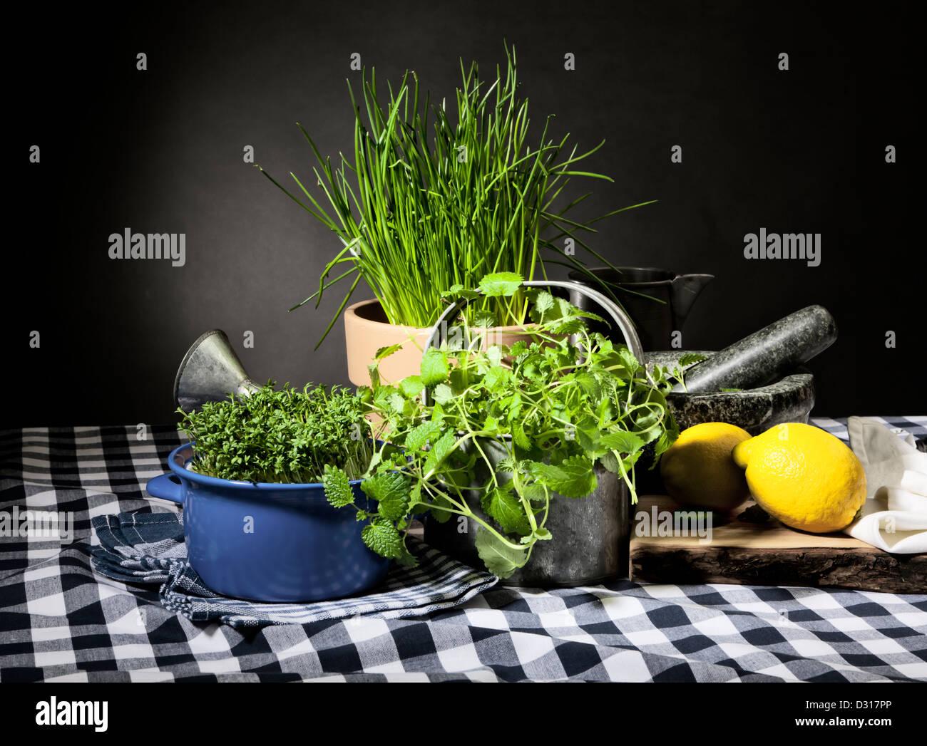 Bodegón con hierbas frescas y utensilios de cocina. Imagen De Stock