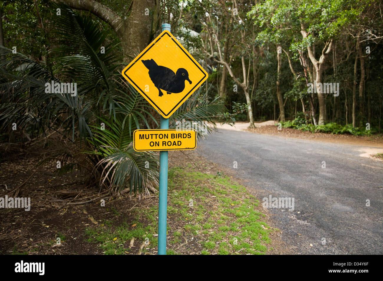 Señal de Carretera de aves de cordero, la isla de Lord Howe de Nueva Gales del Sur, Australia Imagen De Stock