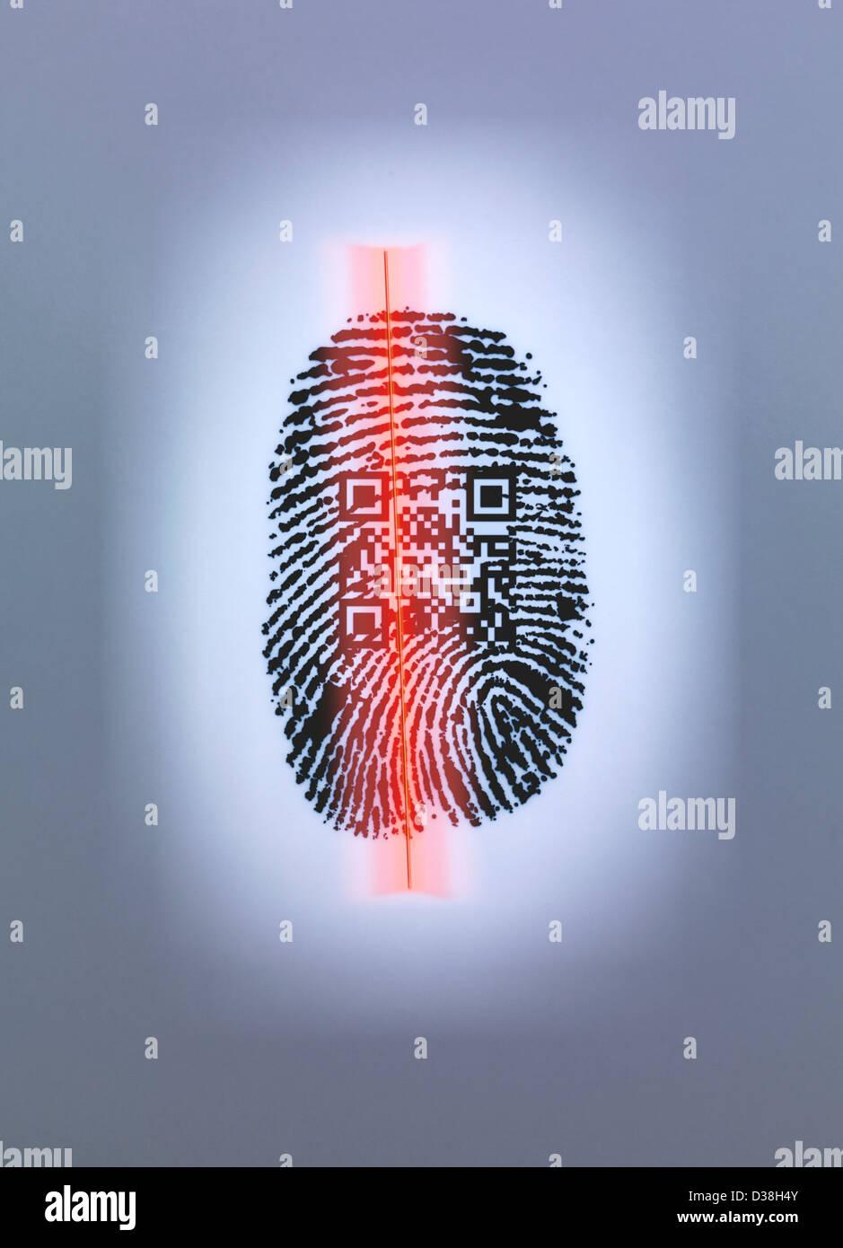 Las huellas dactilares y el código QR en el escáner Foto de stock