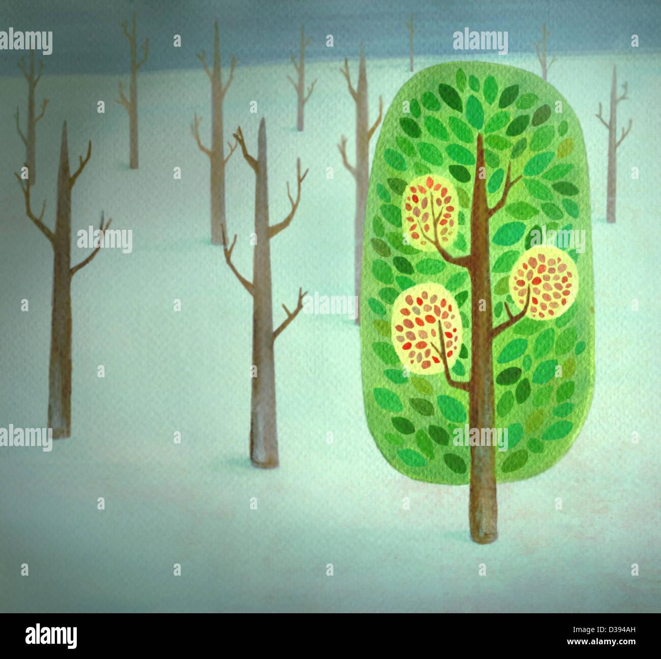Un árbol de floración destacándose agregar desde árboles desnudo Foto de stock