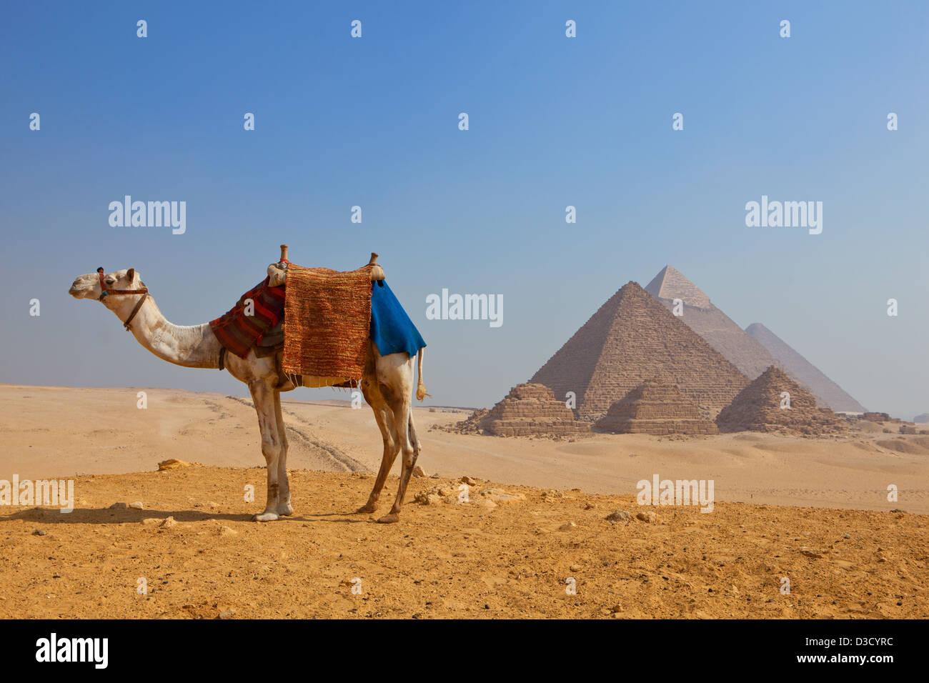 Pirámides de Giza en El Cairo, Egipto Imagen De Stock
