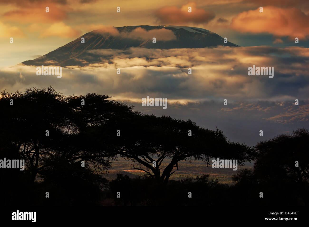 África horizontal - el Monte Kilimanjaro y línea de nubes al atardecer, vista desde el paisaje de sabana Imagen De Stock