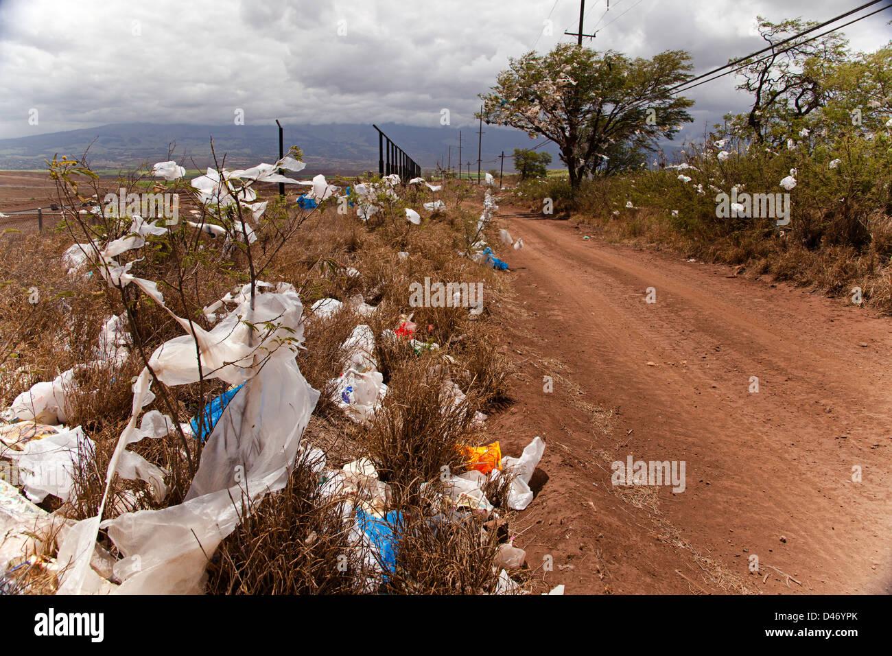 Matorrales y árboles llenos de bolsas de plástico, viento abajo de un vertedero en la isla de Maui, Hawai. Imagen De Stock