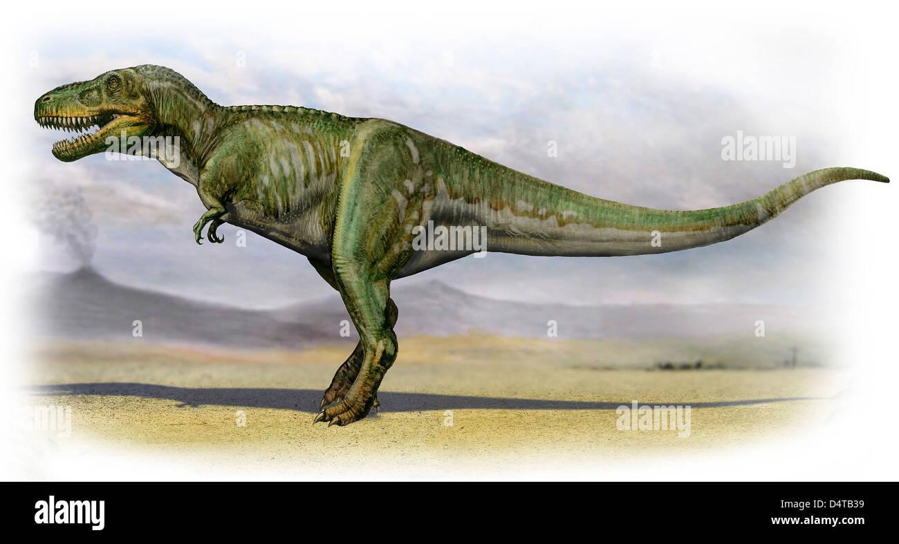 Tarbosaurus bataar, un dinosaurio de la era prehistórica desde finales del período Cretácico. Foto de stock