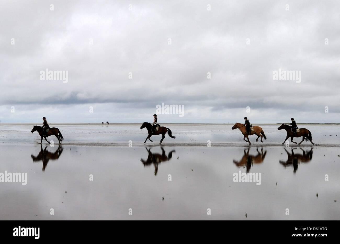 Archivo - Un archivo de imagen de fecha 13 de agosto de 2011 muestra un grupo de jinetes galopando en la playa de Foto de stock