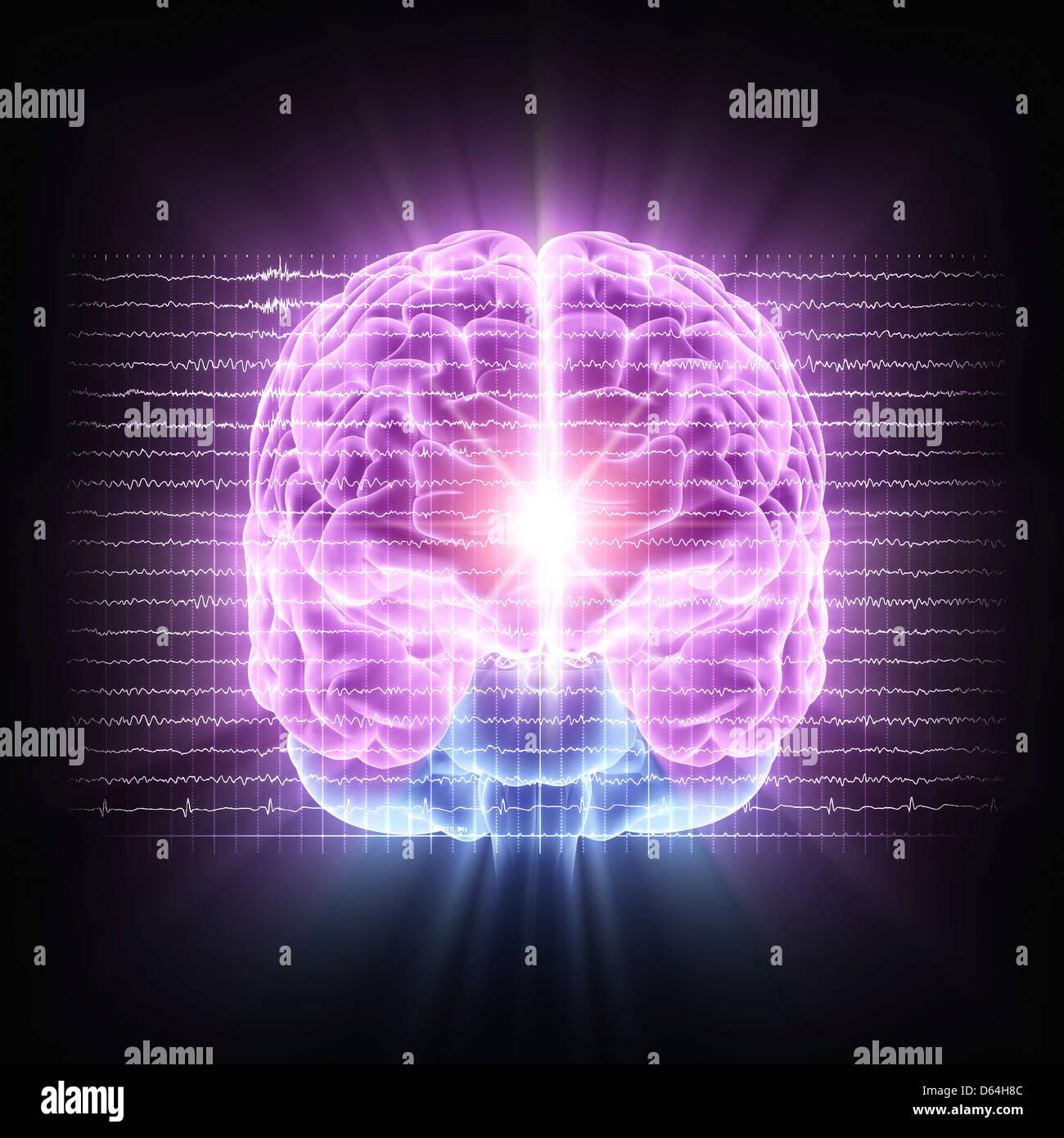 La actividad cerebral, ilustraciones Imagen De Stock