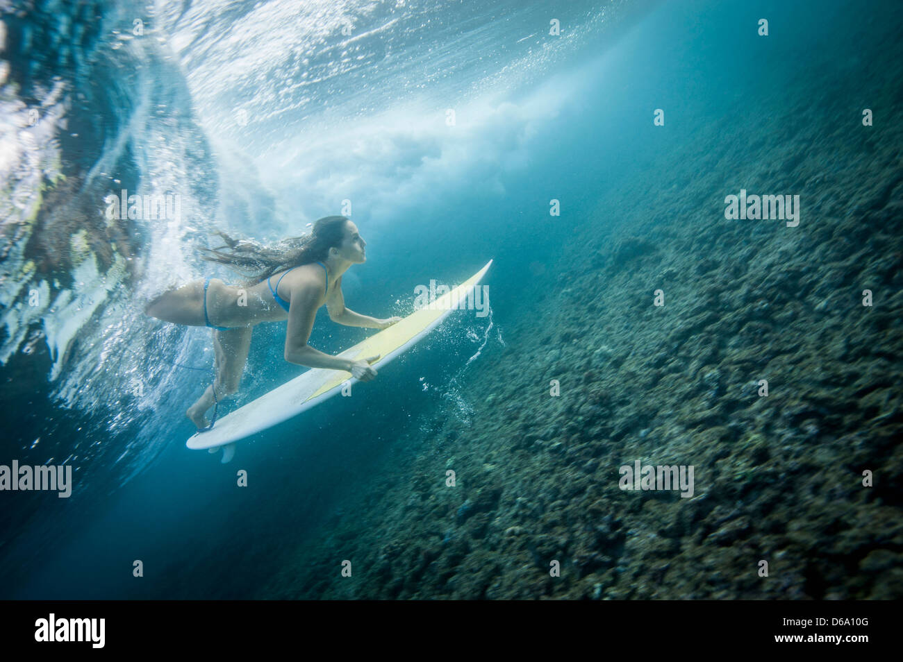 Surfista en onda de buceo bajo el agua Imagen De Stock