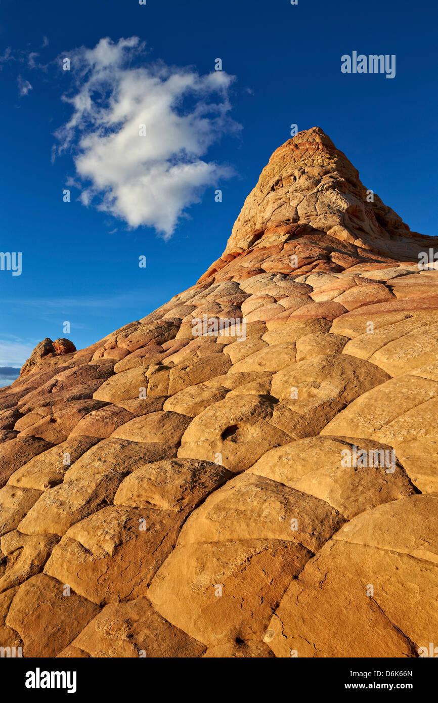 Colina de arenisca con cerebro textura y una nube, Coyote Buttes Desierto, Vermillion Cliffs National Monument, Arizona, EE.UU. Foto de stock