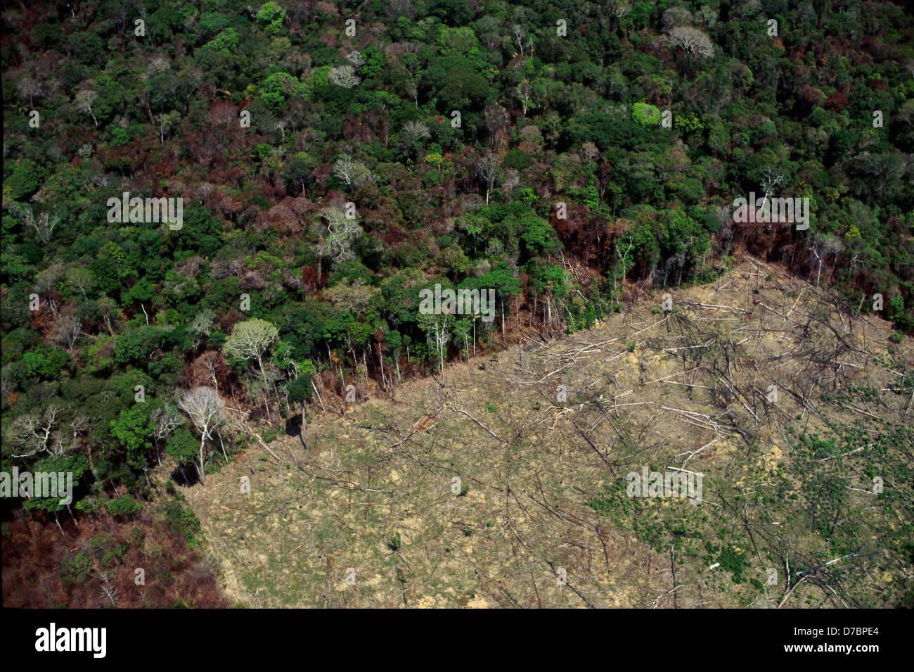 Vista aérea de la tala de bosques, la deforestación. Selva amazónica, Brasil. Imagen De Stock