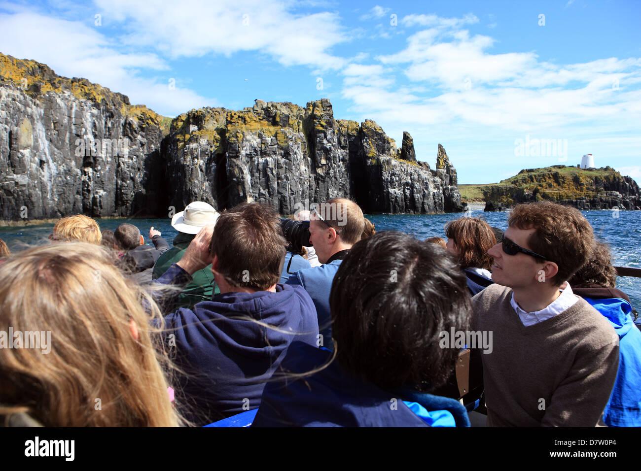 Los turistas en un viaje en barco mirando a los pájaros en los acantilados de la isla de mayo en el Firth of Imagen De Stock