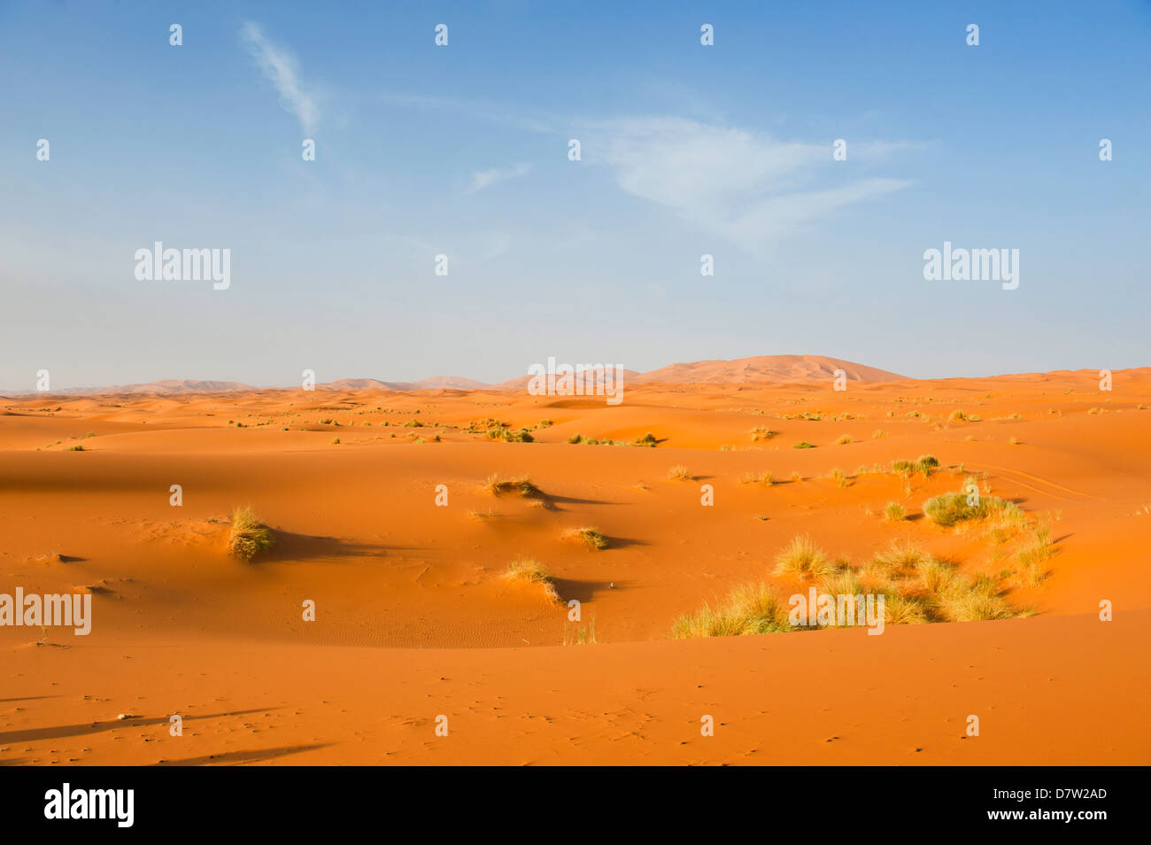 Paisaje de dunas de Erg Chebbi : Desierto, el desierto del Sahara, cerca de Merzouga, Marruecos, Norte de África Imagen De Stock